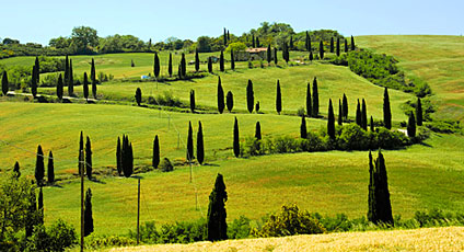 Val D'Orcia Hotel