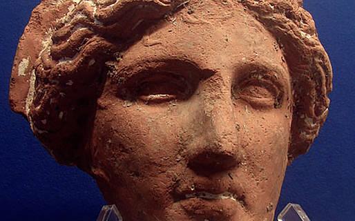 Centro Caprense Ignazio Cerio Musei Capri
