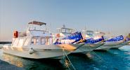 Laser Capri - Excursions by sea